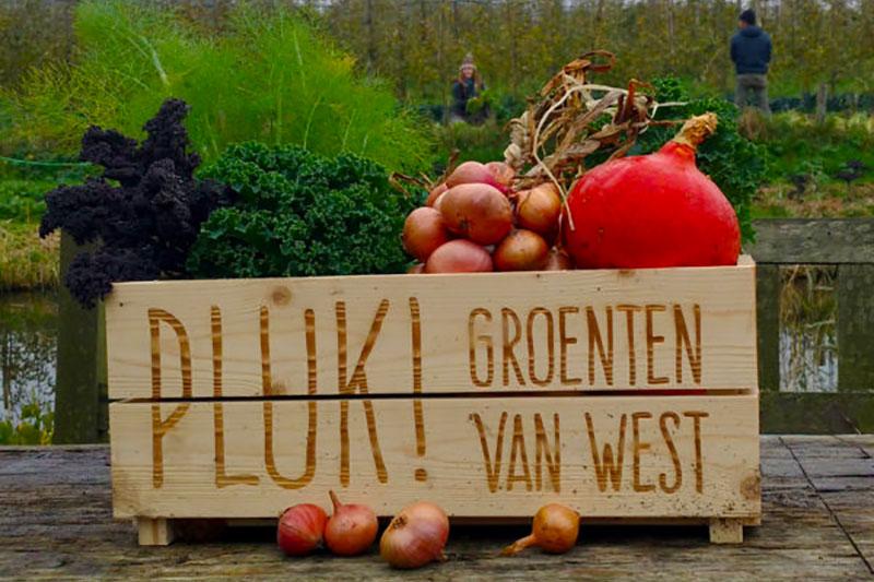 Fruittuin van West Amsterdam Onze Boeren PLUK!